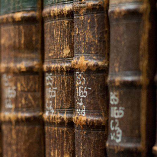 Image depicts the spines of old books lined up