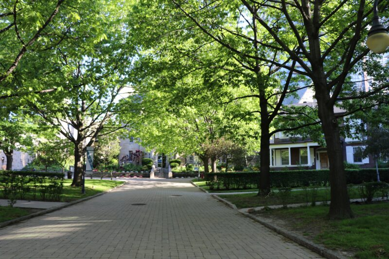 Photograph of Elmsley Place in springtime