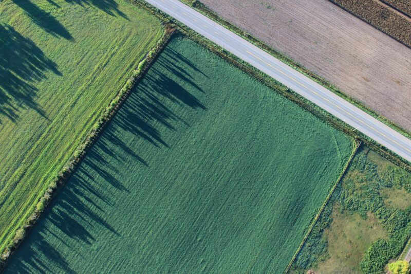 A bird's-eye view of farm plots