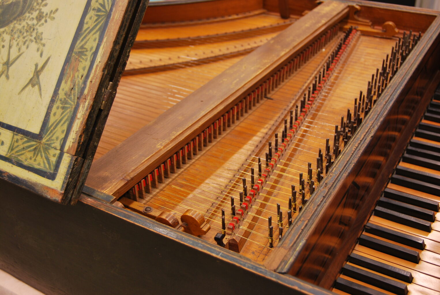 Detail image of harpsichord keys and strings