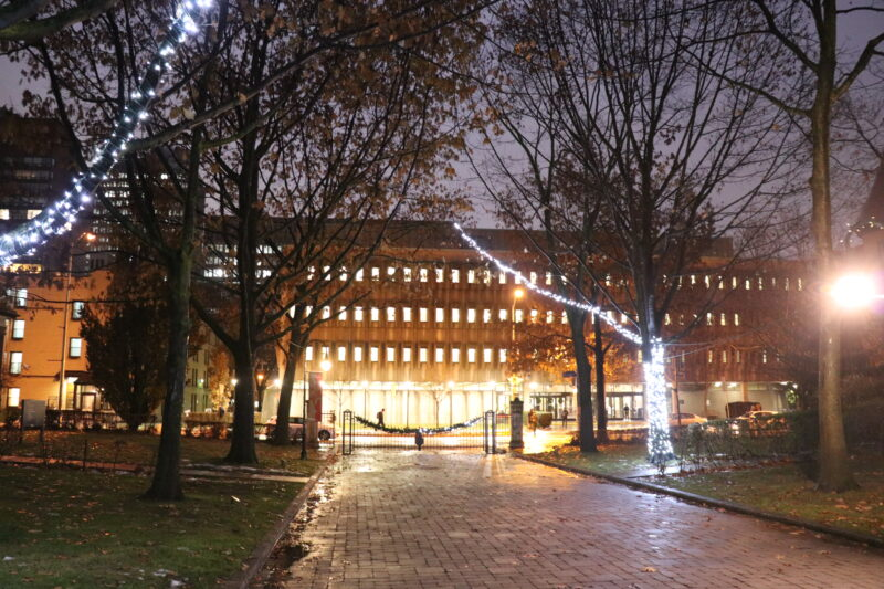 Holiday lights on tree branches overhang Elmsley Place with the Kelly Library illuminated in the background