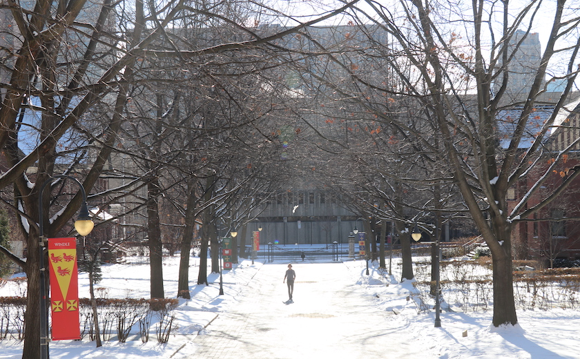 A person walks up Elmsley Lane on a bright winter day