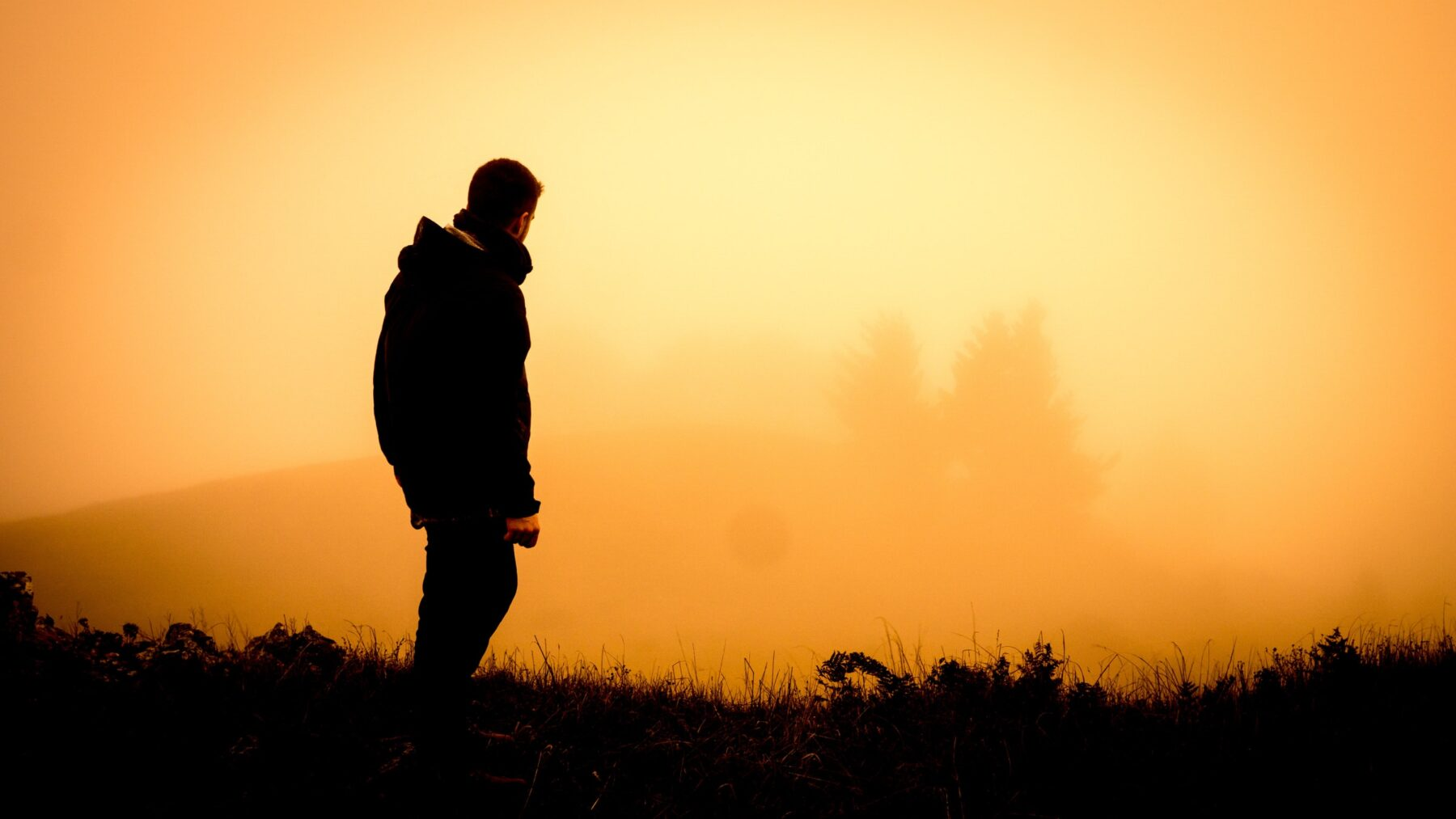 Photograph of a young man standing on a hill looking out on a misty sunrise